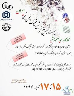 کارگاه آموزشی بیست و یکمین سمینار شیمی فیزیک انجمن شیمی ایران